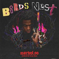 """Warhol.SS Releases New Song """"Birds Nest"""""""