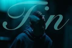 """Syd's """"Fin"""" (Review)"""
