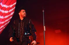 The Weeknd Concert Cut Short After Fans Rush Arena Gates