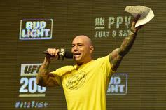 Joe Rogan's UFC 247 Criticism Leads To Swift Response From Commission