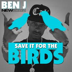 Ben J - Save It For The Birds