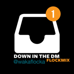 Waka Flocka - Down In The DM (Remix)