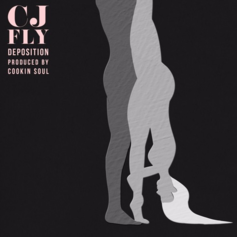 CJ Fly - Deposition