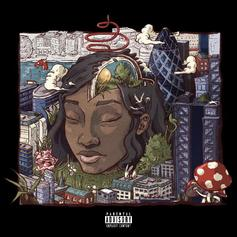 Little Simz - Picture Perfect