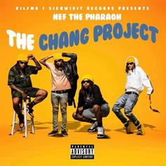 Nef The Pharaoh - The Chang Project