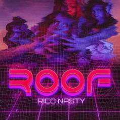 """Rico Nasty Taps Kenny Beats For New Track """"Roof"""""""