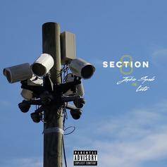"Lute Joins Jackie Spade On ""Section 8"""
