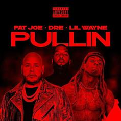 "Fat Joe, Dre, & Lil Wayne Are Martians On ""Pullin"""