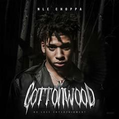 "NLE Choppa Drops Debut EP ""Cottonwood"" Ft. Blueface"