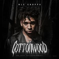 "NLE Choppa & Meek Mill Complete ""Cottonwood"" Vibes With ""Cruze"""