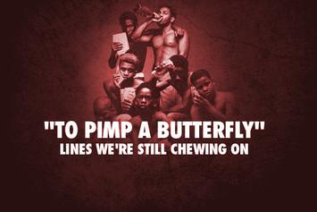 "6 Lines From Kendrick Lamar's ""To Pimp a Butterfly"" We're Still Chewing On"