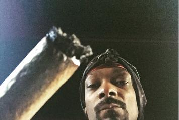 """First Week Sales Projections For Snoop Dogg's """"BUSH"""""""
