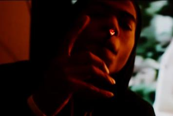 "King Louie ""Fuck Spike Lee"" Video"