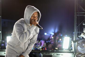Kendrick Lamar Reportedly Earns More Than $1M Per Concert