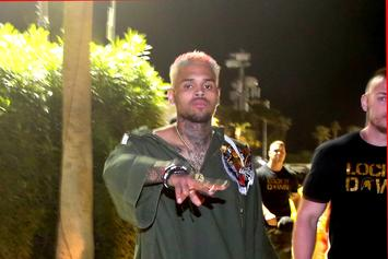 Charges Dropped Against Chris Brown After Alleged Basketball Brawl