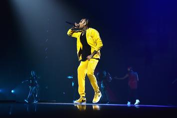 Chris Brown Performance Ends In Stabbing