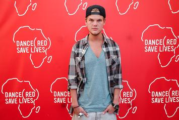 Avicii's Funeral Plans Revealed By Family