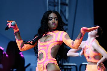 Azealia Banks Trolls Nick Cannon & Fans In His Comments Section