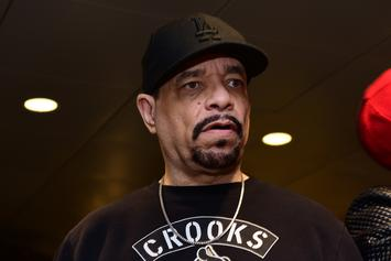Ice-T Slams Journalist For Saying Idris Elba Can't Play James Bond Because He's Black