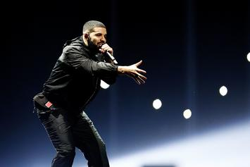 """Drake Stops Mid-Song To Address A Fan's """"BBW"""" Sign During London Show"""