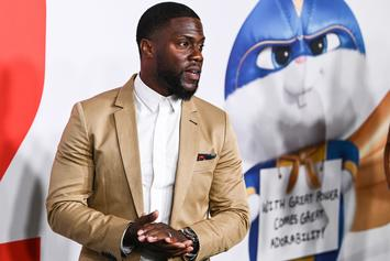 Kevin Hart Sued For Security Guard's Blow To A Woman's Face