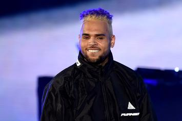 Chris Brown's Battery Charges Dropped In Florida: Report