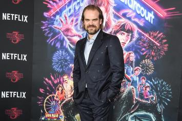 """Stranger Things"" Actor David Harbour Initially Thought The Series Would Tank"
