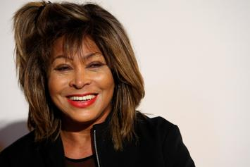 Tina Turner Mural In North Carolina Defaced With Incorrectly Drawn Swastika
