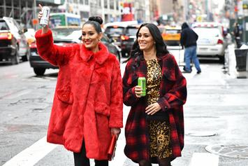 WWE Stars Brie & Nikki Bella Announce They're Both Pregnant