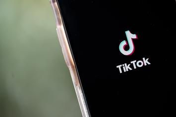 TikTok To Sue Trump Administration For Executive Order Ban: Report