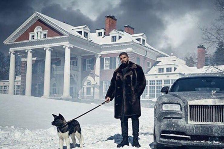 Drake & dog in the snow